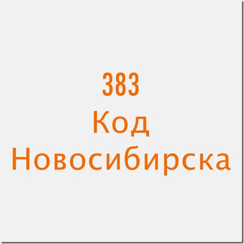 383 Новосибирск